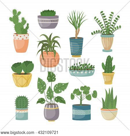 A Set Of Home Plants In Pots. Decorative Plants In The Interior Of The House. Flat Style.
