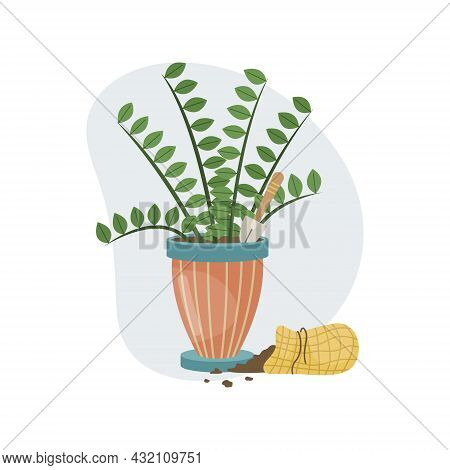 A Home Plant In A Pot, A Shovel And Soil In A Bag. Planting. Decorative Plants In The Interior Of Th