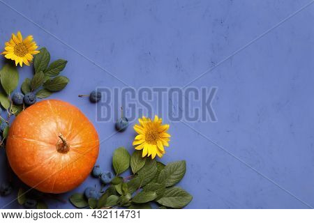 Pumpkin, Branches With Blackthorn Berries And Flowers Of A Sunflower On A Purple Background. Thanksg
