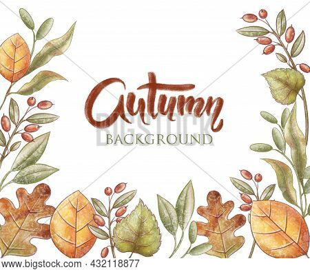 Autumn Background. Fall Yellow Leaf. Oak, Linden, Barberry And Acacia Leaves