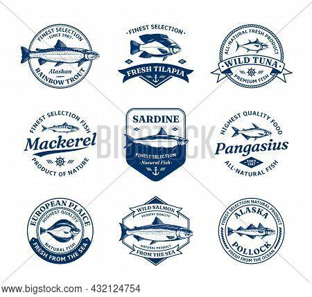 Fish Logo, Illustrations And Design Element