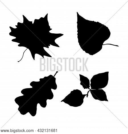 Black Silhouettes Of Autumn Leaves: Oak, Maple, Alder, Linden. Fall Nature Tree Leaves. Isolated Whi