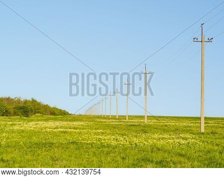 An Endless Field With Flowers And Green Grass In A Rural Farming Area. Poles Of A Power Line With El