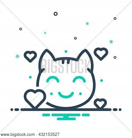 Mix Icon For Lovely Beautiful Graceful Kitty Cat Animal Nice Sweet Cute Kitten Domestic Adorable Fac