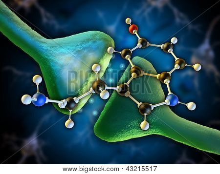 Serotonin molecule as a neurotransmitter in the human brain. Digital illustration.