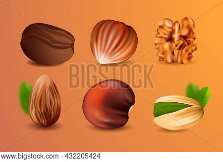 Collection Of Realistic Nuts. Stickers With Pistachios, Almonds, Peanuts, Chestnuts And Walnuts. Des