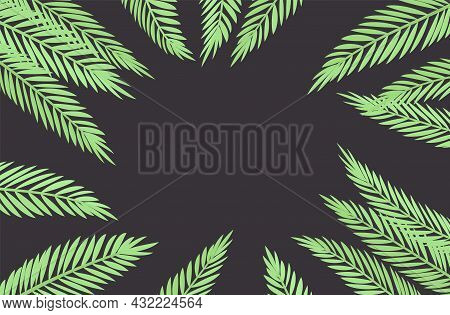 Palm Tree On Dark Background, Copyspace For Tropical Themed Card Decor. Green Tropical Leaves, Jungl