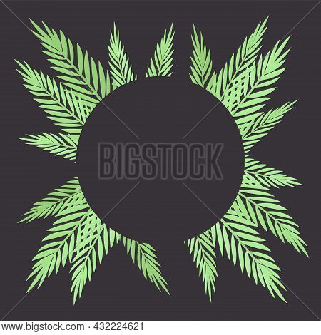Palm Tree Round Dark Background, Copyspace For Tropical Themed Card Decor. Green Tropical Leaves, Ju