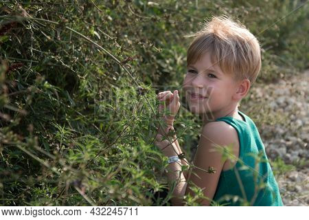 Summer Portrait Of A Happy Child. Girl With Short Hair And Blond Hair. A Blond Boy Surrounded By Her