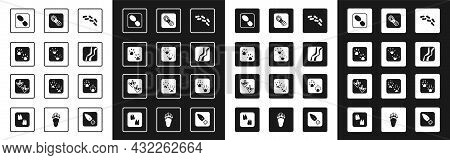 Set Human Footprints Shoes, Frog Paw, Paw, Snake, And Goose Icon. Vector