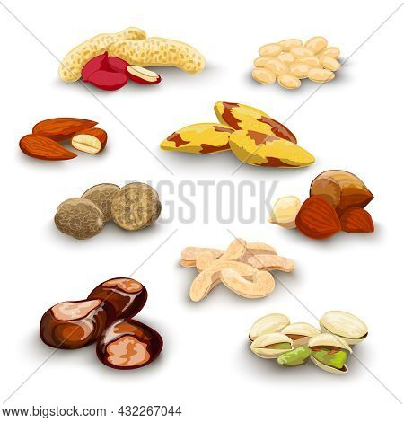 Nuts Decorative Icons Set With Peanut Almond Chestnut Pistachio Isolated Vector Illustration