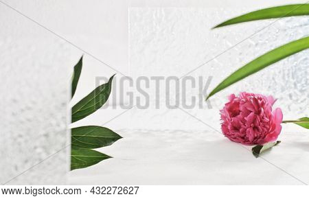 Product Placement Scene For Cosmetic Or Self Care Commercials. Peony Flower, Green Leaves And Bathro