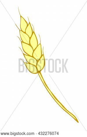 Vector Golden Spikelet Of Wheat Isolated On White Background. Hand Drawn Color Clipart In Flat Style