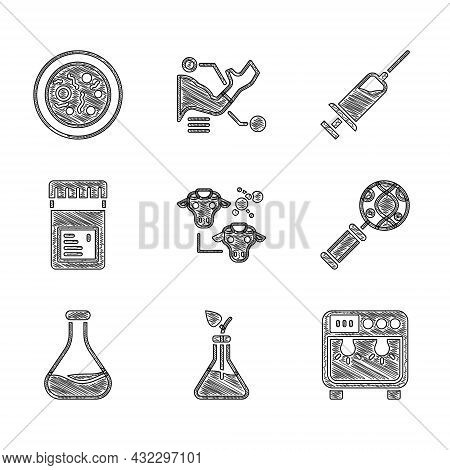 Set Cloning, Plant Breeding, Biosafety Box, Dna Research, Search, Test Tube And Flask, Jar With Addi