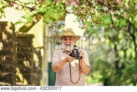 Walking His Favorite Street. Senior Man Hold Camera. Naturalist Concept. Spring Sakura Bloom. Travel