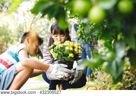 Happy asian brother and sister smiling, wearing gloves and holding flowering potted plant in garden. siblings spending leisure time at home gardening.