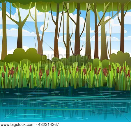 Summer Swampy Landscape. Flat Style. Shore A Quiet River Or Lake. Wild Overgrown Pond Against The Ba