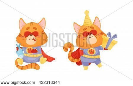 Ginger Whiskered Cat In Red Superhero Cloak Smacking Lips And Holding Gift Box Vector Set