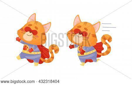 Ginger Whiskered Cat In Red Superhero Cloak Running And Walking Vector Set