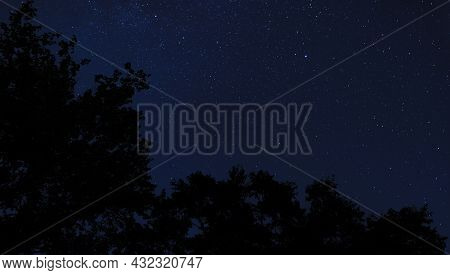 Stars And Silhouetted Trees With Room For Text Near Raeford Nc