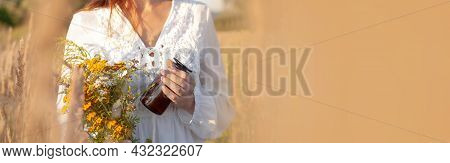 Concept Medicinal Herb Herbalist. Banner, Copy-space. Woman Picking Herbs Against The Backdrop Of A