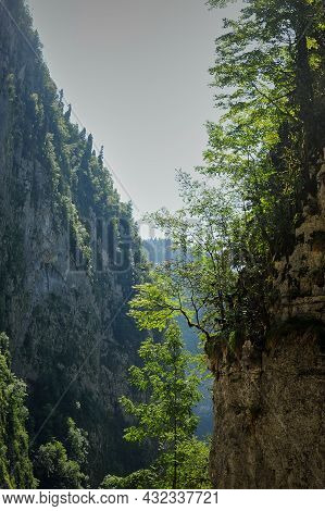Gorge Of Mountains With Trees Growing On Them. The Mountains Of Abkhazia Are The Countries Of The So