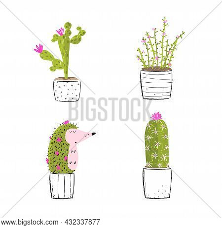 Potted Cactus And Succulent With A Hedgehog Sitting In The Pot, Hiding And Blooming. Humorous Hedgeh