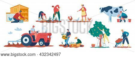 Farmers At Work, Agricultural Workers Harvesting Crops, Caring For Animals. Farmer Picking Apples, C