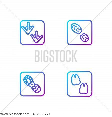 Set Line Camel Paw Footprint, Human Footprints Shoes, Goose And . Gradient Color Icons. Vector