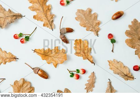 Autumn Composition. Pattern Of Oak Leaves, Acorns And Red Berries On White Background. Autumn, Fall,