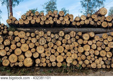 Stack Of Tree Trunks Cut Down In Felling With A Handwritten Diameter On Each