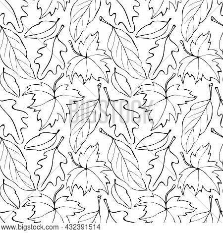 Seamless Pattern Falling Leaves. Vector Autumn Texture Isolated, Outline, Sketch Style. Concept Of F