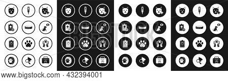 Set Veterinary Clinic Symbol, Collar With Name Tag, Clipboard Medical Clinical Record Pet, Cat, Medi
