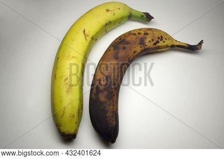 Pair Of Bananas In Peel: An Overripe Banana And Fresh Bright Yellow Banana