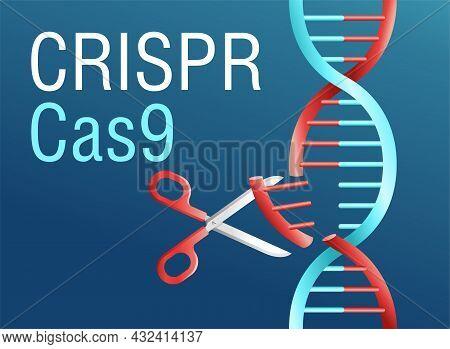 Crispr Cas9 Illustration. Gene Mutation Research In Genetic Engineering. Dna Modification Vector Con