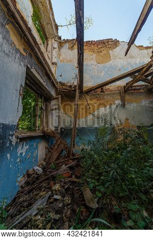 Broken Wooden Window And Room With Tall Grass, View Inside Of An Abandoned Half-destroyed Dormitory