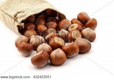 Fresh Hazelnuts In Bag From Sacking Isolated On White Background.