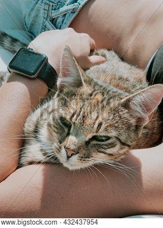 Cat owner sunbathing with her cat