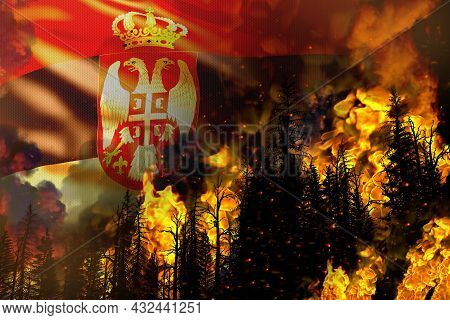 Big Forest Fire Fight Concept, Natural Disaster - Infernal Fire In The Trees On Serbia Flag Backgrou