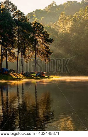 Beautiful Landscape Sunshine Rays Of Light In The Morning And Lake In Pine Forest Trees At Pang-ung