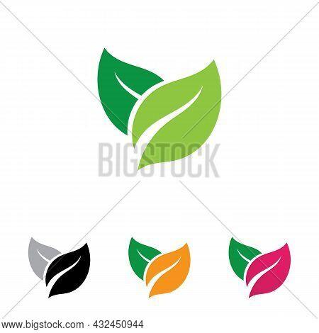 Leaf Leaves Logo Green Vector  Image