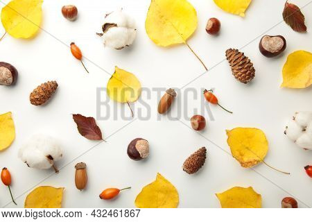 Autumn Composition. Dried Leaves, Flowers, Berries On White Background. Thanksgiving Day Concept.