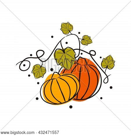 Hand-drawn Sketch Pumpkins With Leaves On A Melon Field. Doodle Style Picture Isolated On White Back