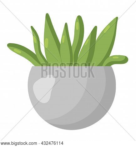 A Flower Pot With Plants. Vector Cozy Cute Indoor Flower Isolated On A White Background. Hygge Time.