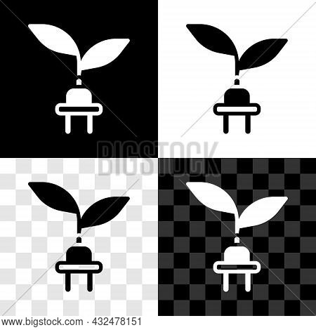 Set Electric Saving Plug In Leaf Icon Isolated On Black And White, Transparent Background. Save Ener