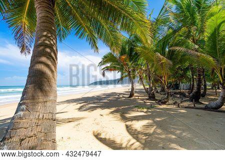 Phuket Karon Beach Summer Beach With Palms Trees Around In Karon Beach Phuket Island Thailand, Beaut