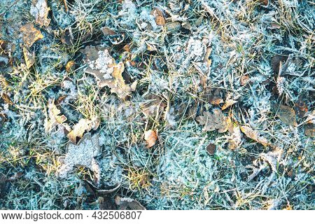 The Beautiful Closeup Of The Snowy Glade In The Sun. The Picturesque Winter Background. Selective Fo