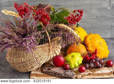 Autumn Still Life On A Concrete Background, Basket With Heather And Viburnum And Fruits, Thanksgivin