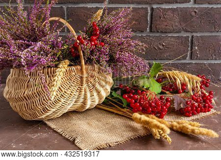 Autumn Composition Of Heather, Viburnum And Wheat Ears In A Wicker Basket, Still Life