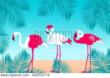 Tropical Background With Flamingos And Palm Trees. Jungle Frame